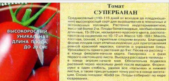 """Томат """"ажур"""": характеристика и описание сорта, отзывы, фото"""