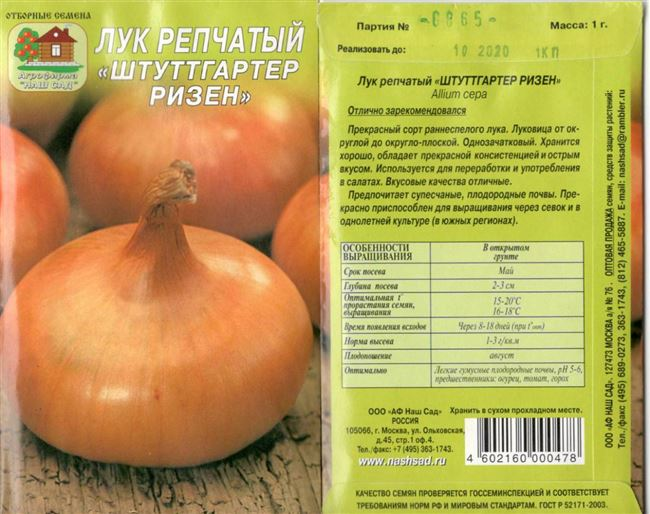 Лук ред барон: описание сорта, посадка и уход, выращивание из семян