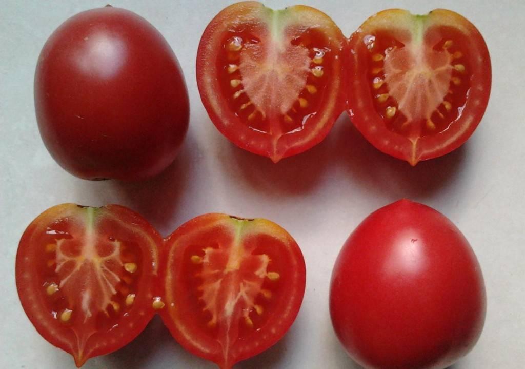 Томат сызранская пипочка характеристика и описание сорта урожайность с фото