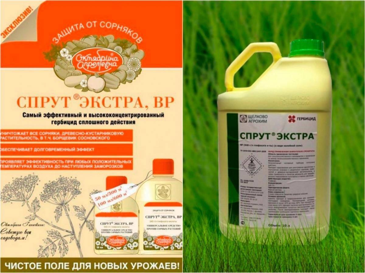 Глифос от сорняков: инструкция по применению гербицида, состав и форма выпуска