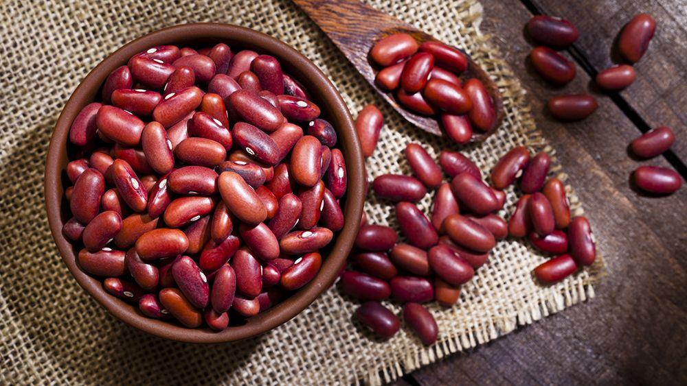 Красная фасоль: польза и вред, свойства, как готовить