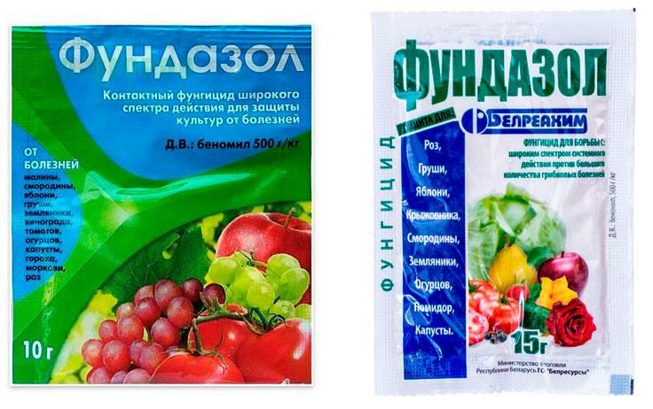 Все о гербицидах, удобрениях и средствах борьбы с вредителями для клубники