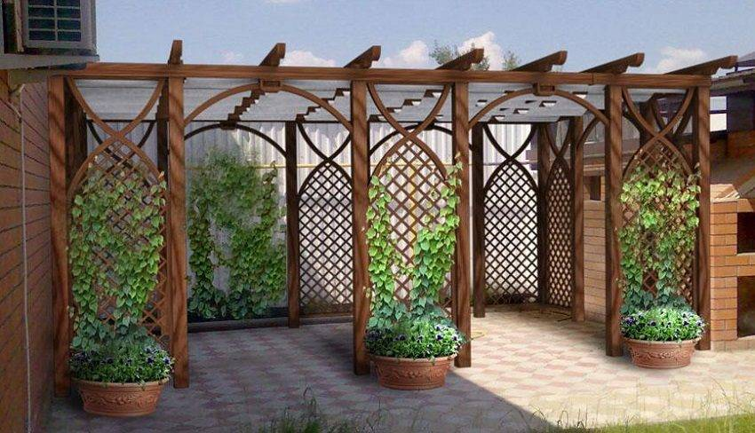 Изгородь для винограда – преимущества и назначение разных видов шпалер