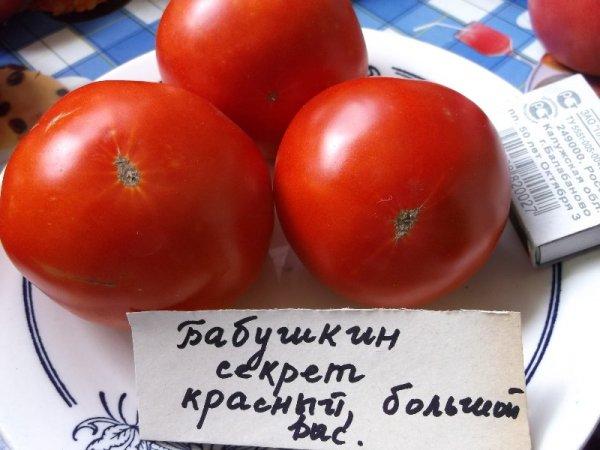 Томат бабушкин секрет: характеристика и описание сорта. урожайность и отзывы огородников