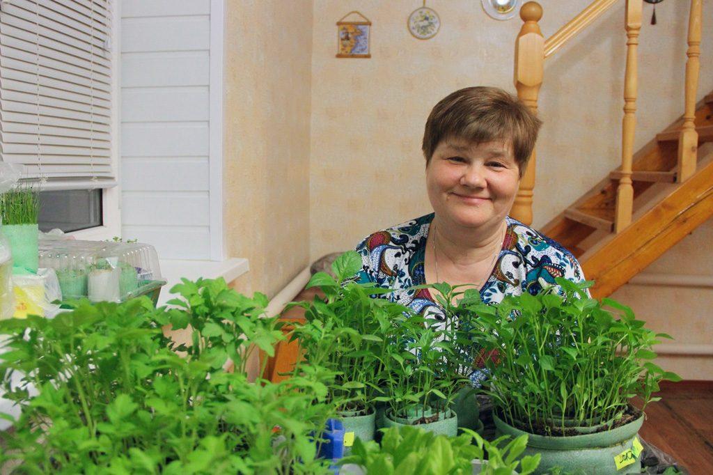 Выращивание рассады в улитках по технологии юлии минаевой. посадка перца в улитку: что рекомендует юлия минаева сеем лобелию с юлией минаевой