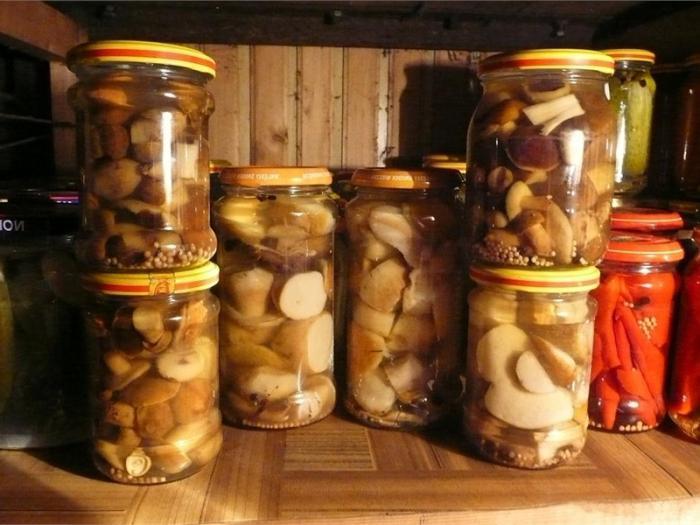 Самые вкусные рецепты маринованных сыроежек. рецепты приготовления маринованных сыроежек на зиму в банках