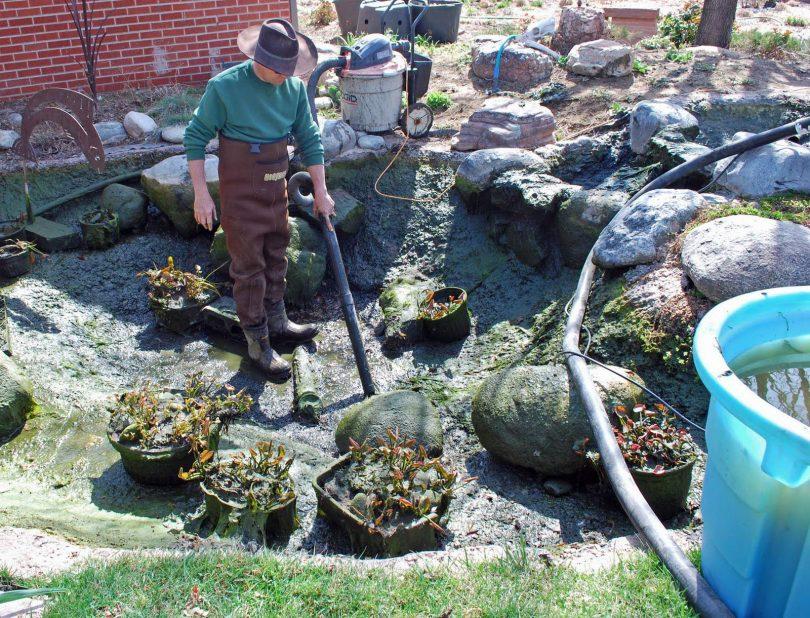 Как подготовить пруд к зимовке рыб: подготовка и подогрев пруда