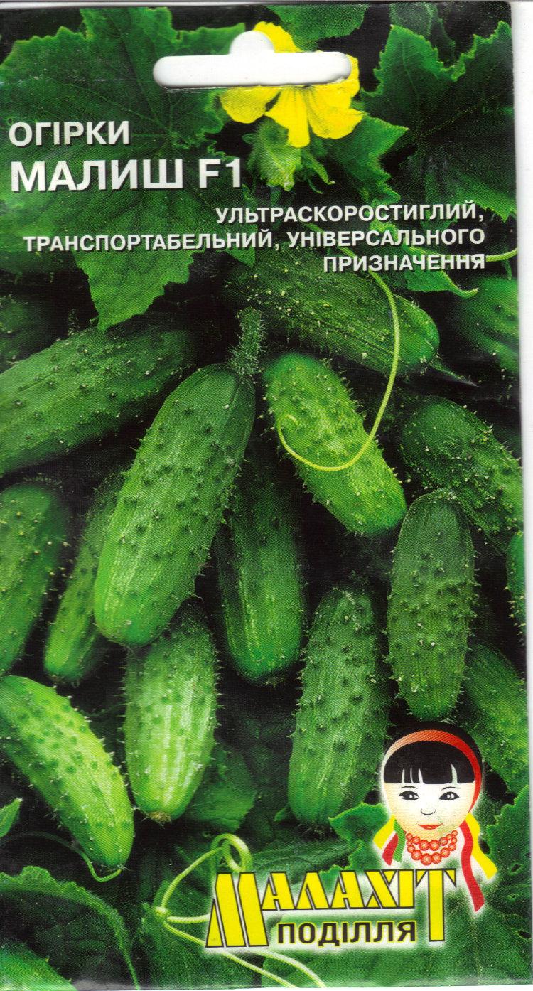 ✅ огурец малыш характеристика и описание сорта - питомник46.рф
