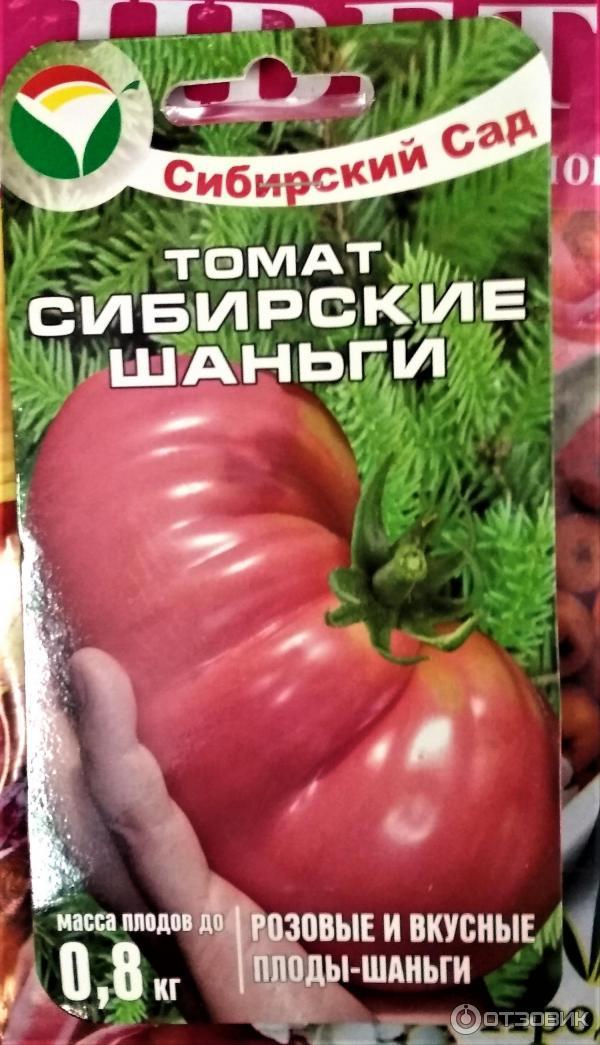 Томаты сибирской селекции для открытого грунта - ранние, низкорослые