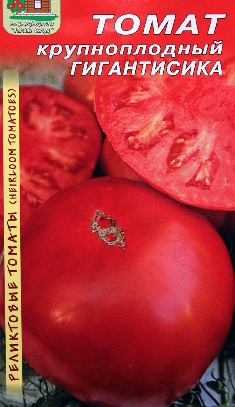 Описание крупноплодного томата Мамонт и выращивание рассады