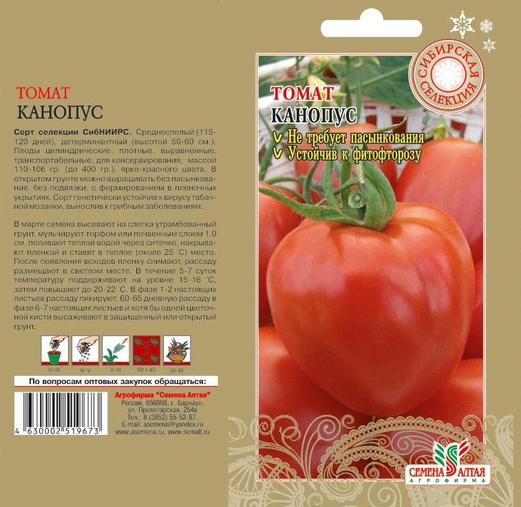 Что такое штамбовые томаты и описание лучших сортов