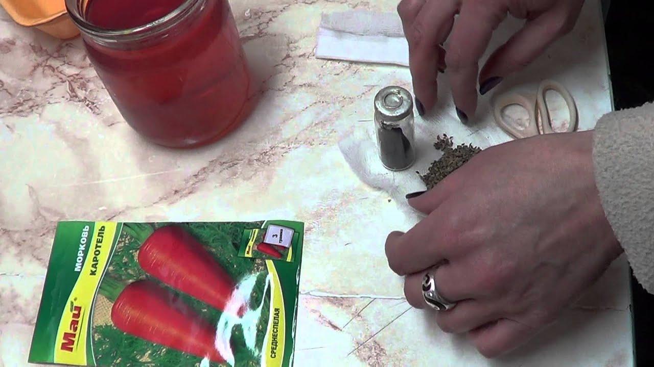 Замачивание семян в перекиси водорода