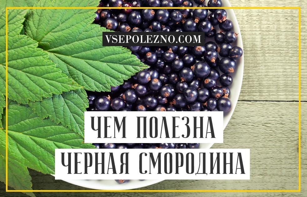 Польза и вред красной смородины, ее влияние на здоровье человека