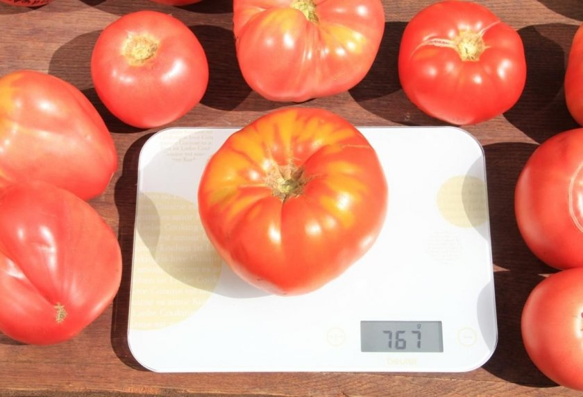 Характеристика томат «любящее сердце» красное: отзывы, описание, фото, урожайность