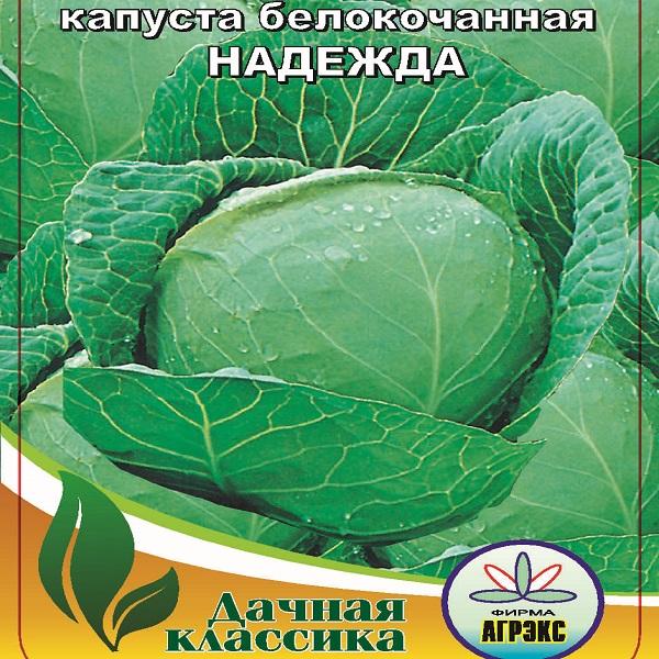 Топ-10 лучших сортов капусты – рейтинг 2020 года