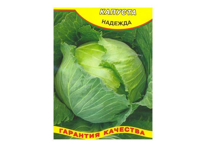Капуста - исконно русский овощ. царица огородов. | садоводство24