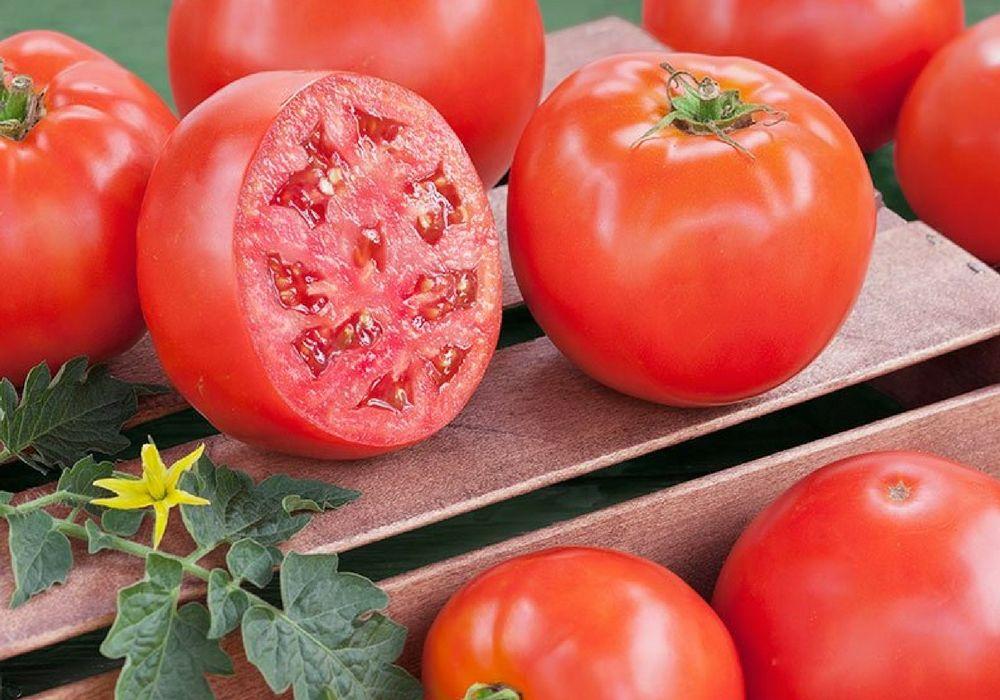 Томат клубничка: характеристика и описание сорта, урожайность с фото и видео
