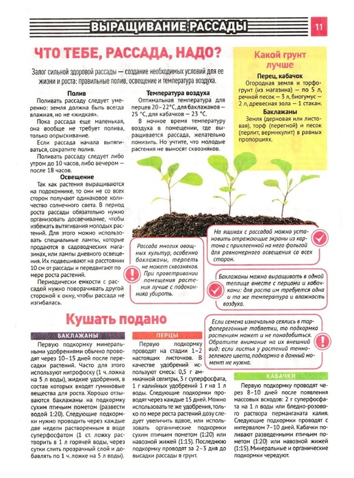 5 лучших подкормок для толстенькой рассады помидоров