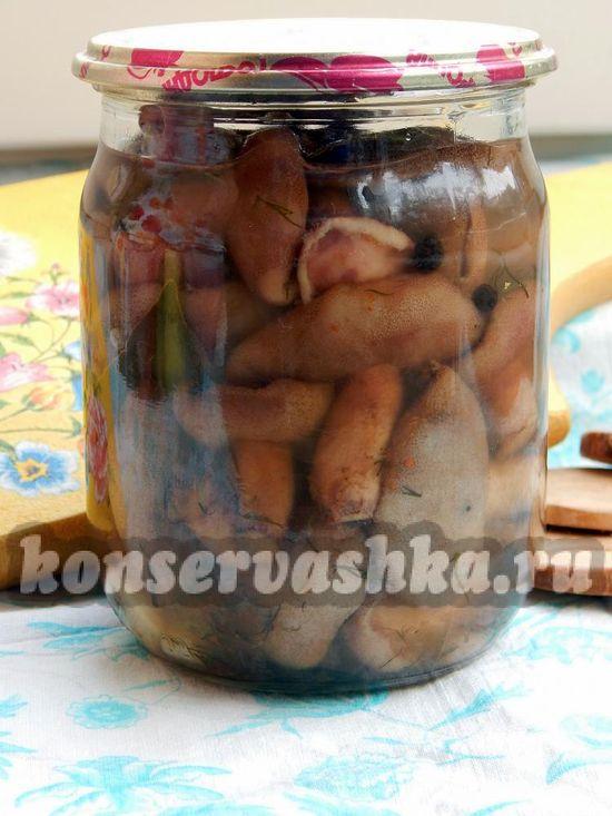 Самые вкусные рецепты маринованных маслят без стерилизации