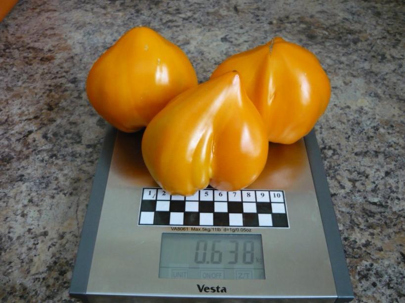 Томат орлиное сердце: отзывы, фото, урожайность, описание и характеристика
