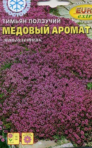 Тимьян (чабрец): выращивание на огороде, сорта