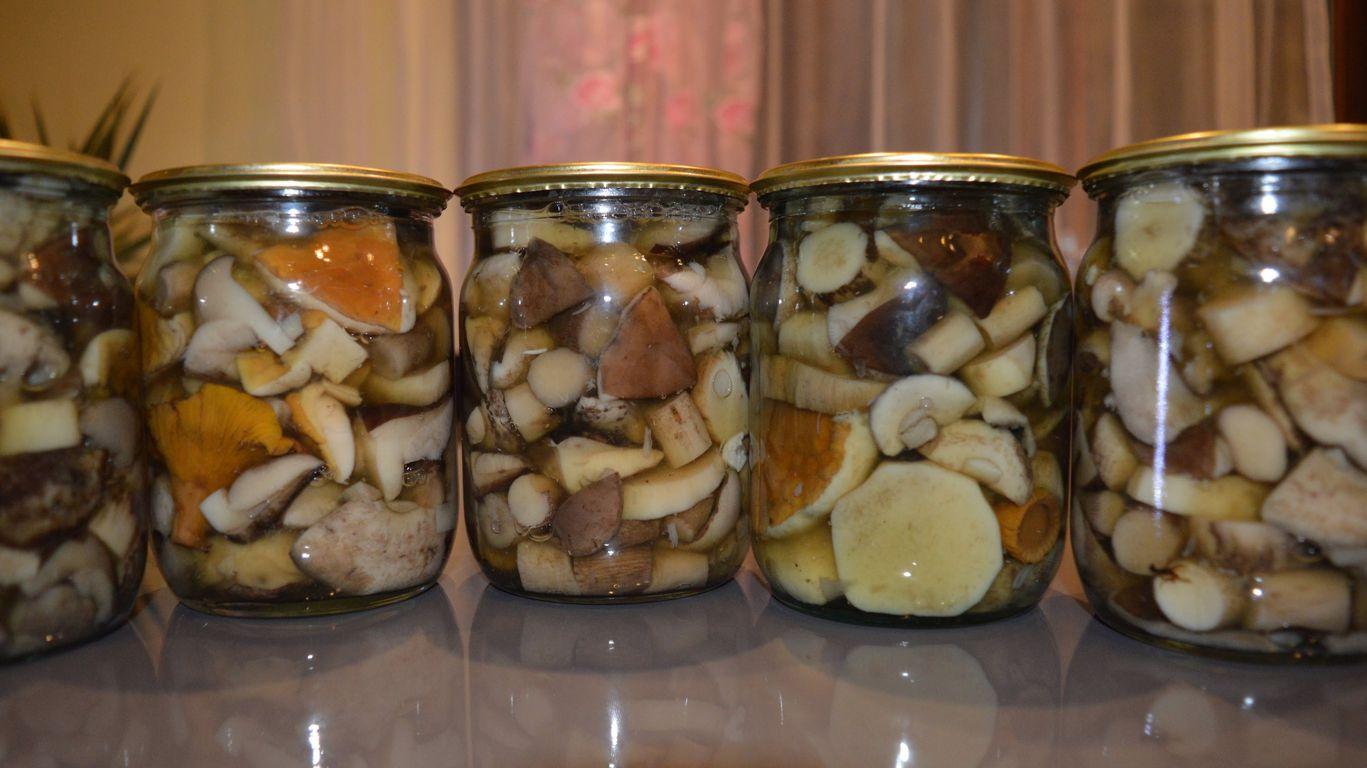 Жареные моховики на зиму. маринованные моховики: рецепт приготовления на зиму в банках с фото и видео. свиные ребрышки с моховиками