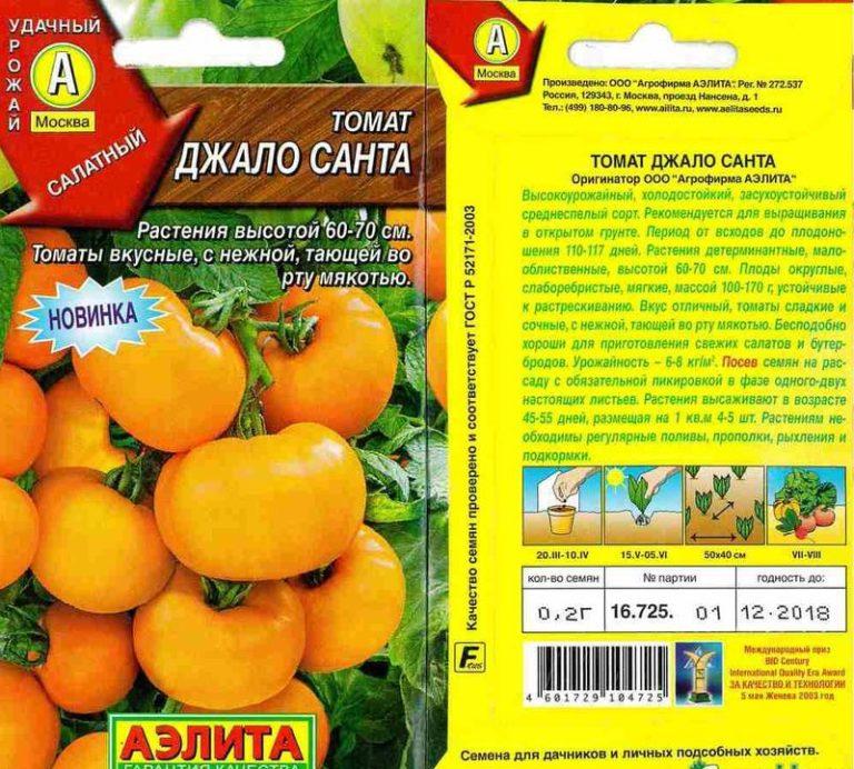 Самые урожайные сорта томатов для открытого грунта: описание, отзывы, фото