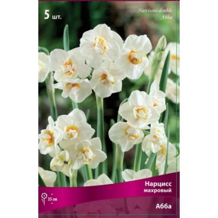 Нарцисс дельнашо: описание сорта, посадка и уход, особенности выращивания