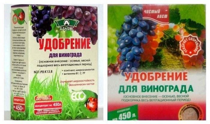 Чем подкормить виноград: весной, летом и осенью
