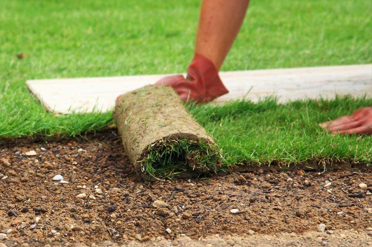 Искусственный газон: укладка покрытия в виде травы на даче, травка в рулонах, плитка, технология производства