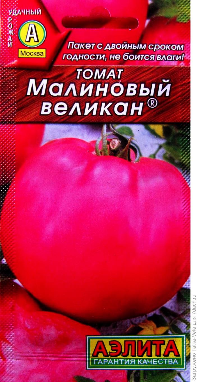 Томат рапсодия нк f1: отзывы об урожайности, описание и характеристика сорта, фото помидоров