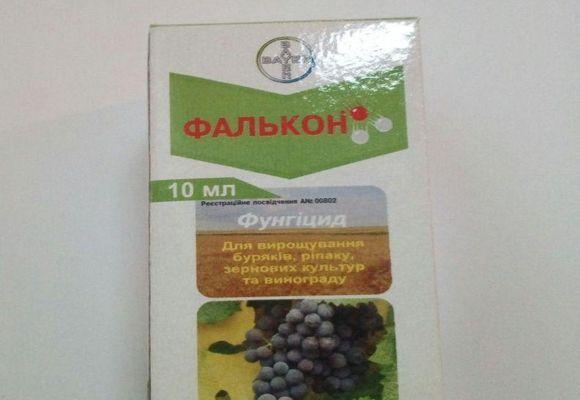 Фалькон: состав, инструкция по применению фунгицида, особенности обработки винограда и других растений