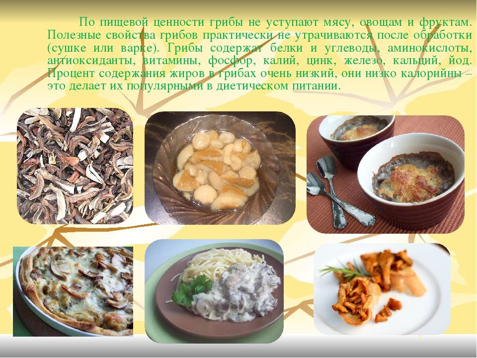 Белый польский гриб: характеристика, полезные свойства и варианты приготовления