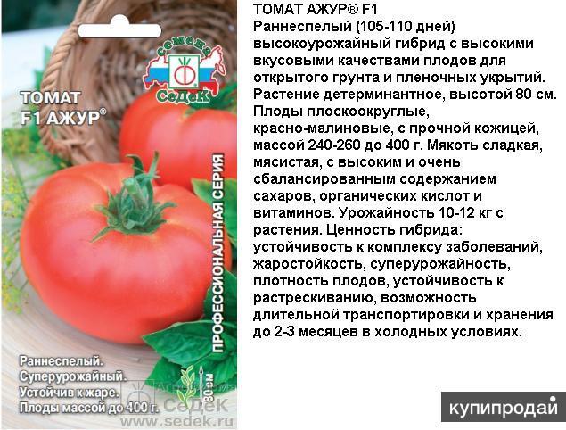 Томат витязь: описание и характеристики сорта, урожайность и выращивание с фото