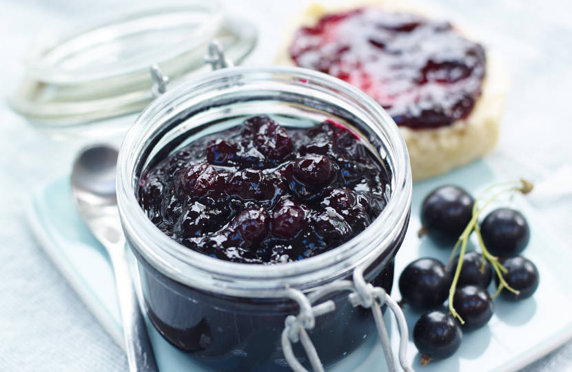 Варенье из черной смородины и крыжовника на зиму: 3 рецепта приготовления ассорти