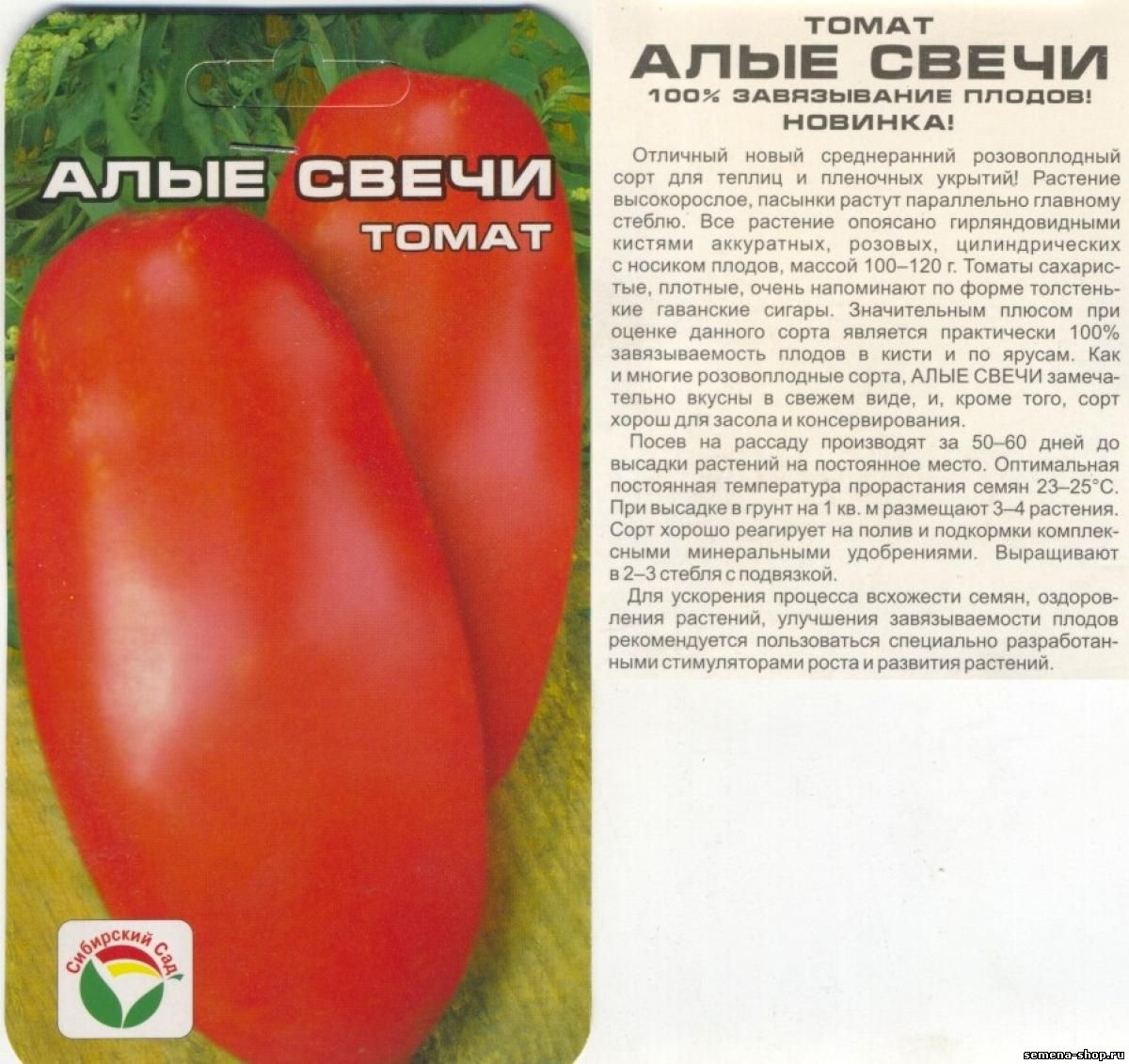 Описание томата Алые свечи, выращивание, уход и борьба с вредителями