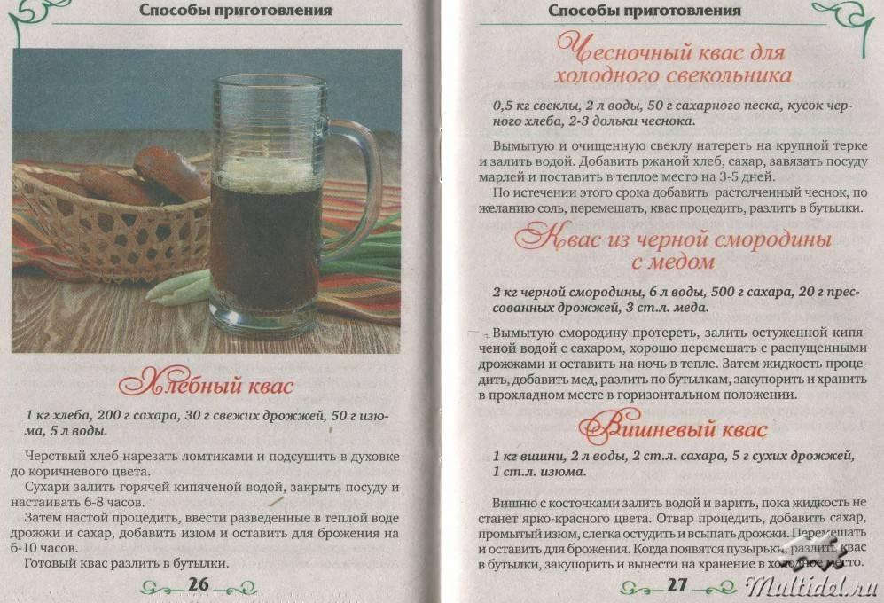 Свекольный квас — полезные свойства и 5 рецептов