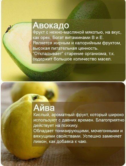 Масло авокадо: польза и вред, калорийность, применение