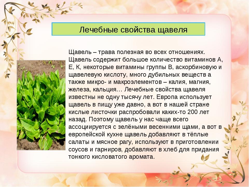 Здоровое питание и семена льна