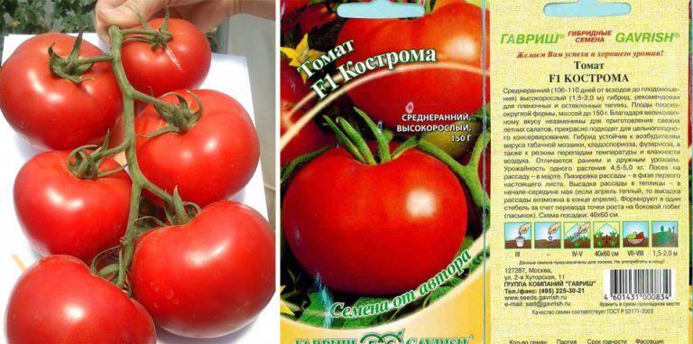 Томат евпатор: отзывы, фото, урожайность и описание сорта