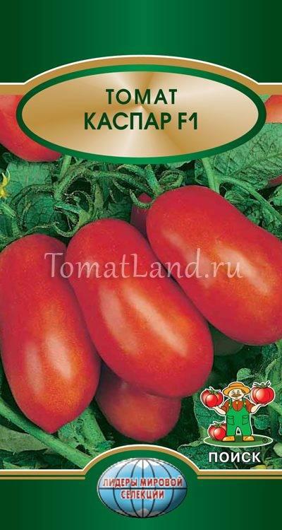 Томат каспар: отзывы, фото, урожайность, описание и характеристика