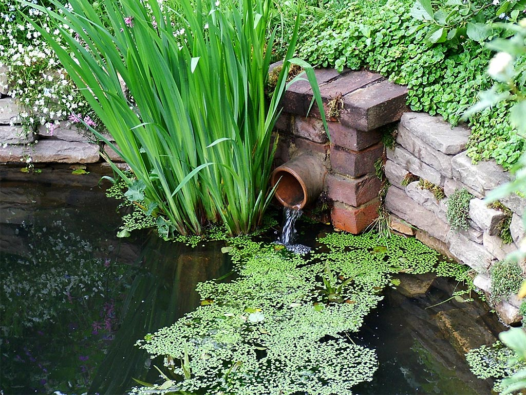 Как слить воду из каркасного бассейна?
