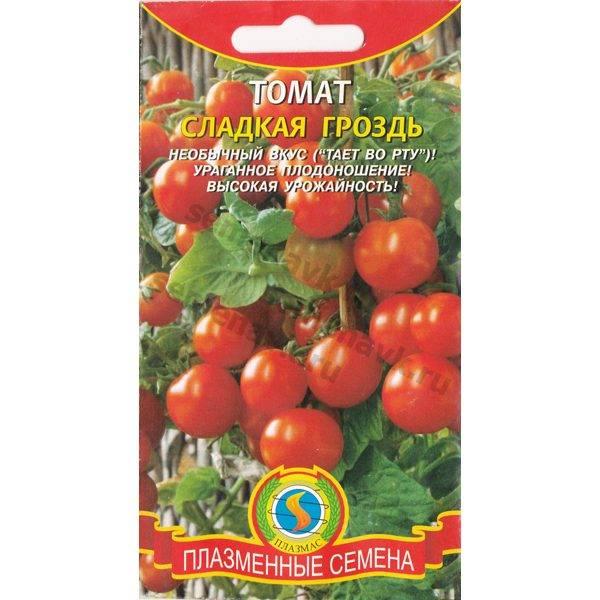 Томат черная гроздь: описание, отзывы, фото, характеристика   tomatland.ru