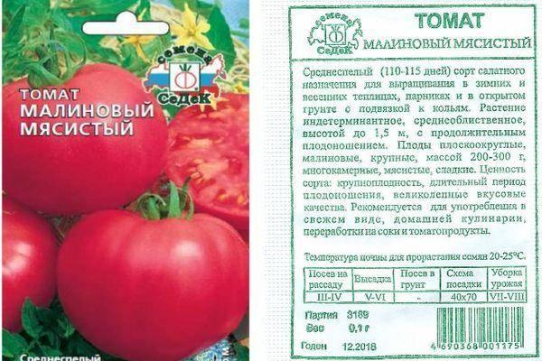 Описание российского томата малиновая рапсодия и выращивание рассады. томат «рапсодия»: выращивание в теплице и в открытом грунте