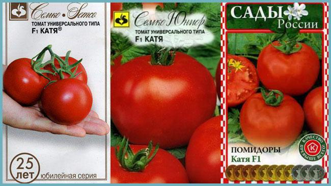 Описание и преимущества томата Розовая Катя f1, рекомендации и отзывы