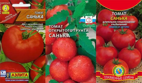 Томат санька: описание сорта, фото, отзывы, характеристика, урожайность, выращивание помидоров