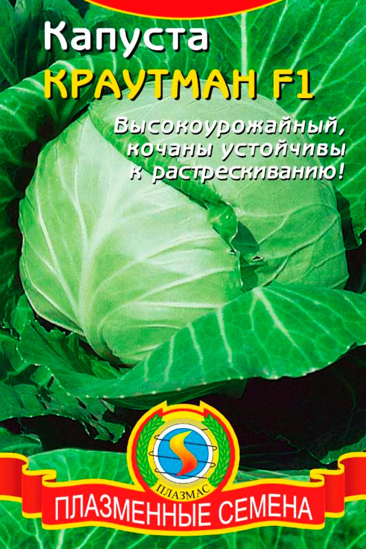 Капуста центурион f1: описание сорта, сроки и правила посадки, профилактика заболеваний, отзывы огородников