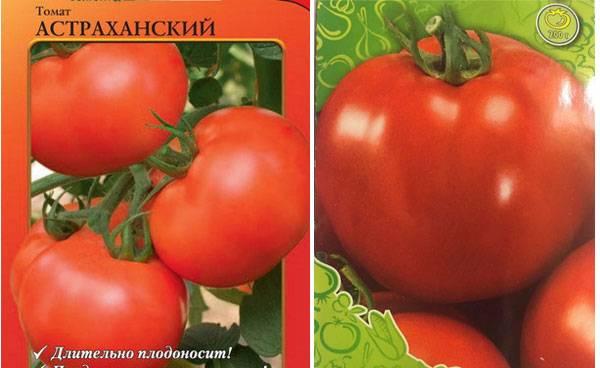 Описание томата Астраханский и правила выращивания рассады