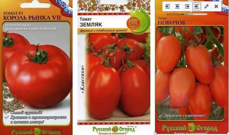 Лучшие томаты для средней полосы россии: обзор сортов с описанием