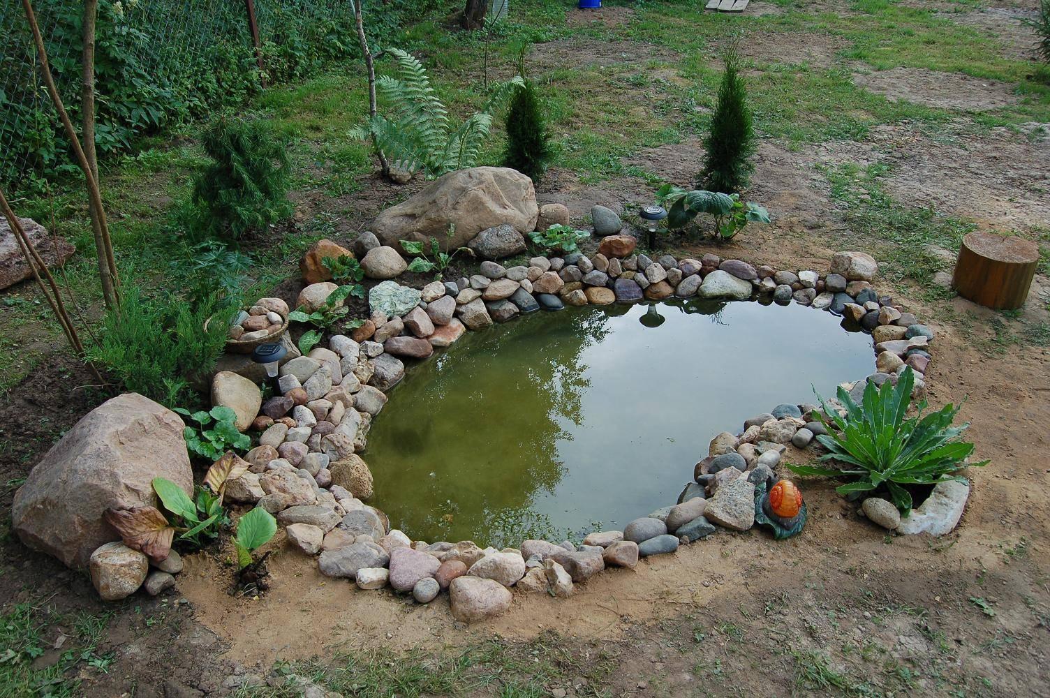 Делаем декоративный пруд на даче своими руками: идеи и пошаговая инструкция